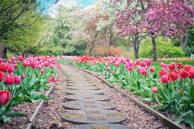 Chodník, zahrada
