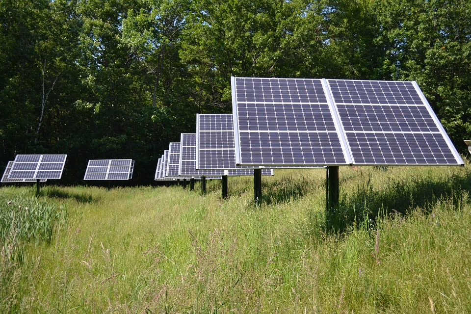 solární pole